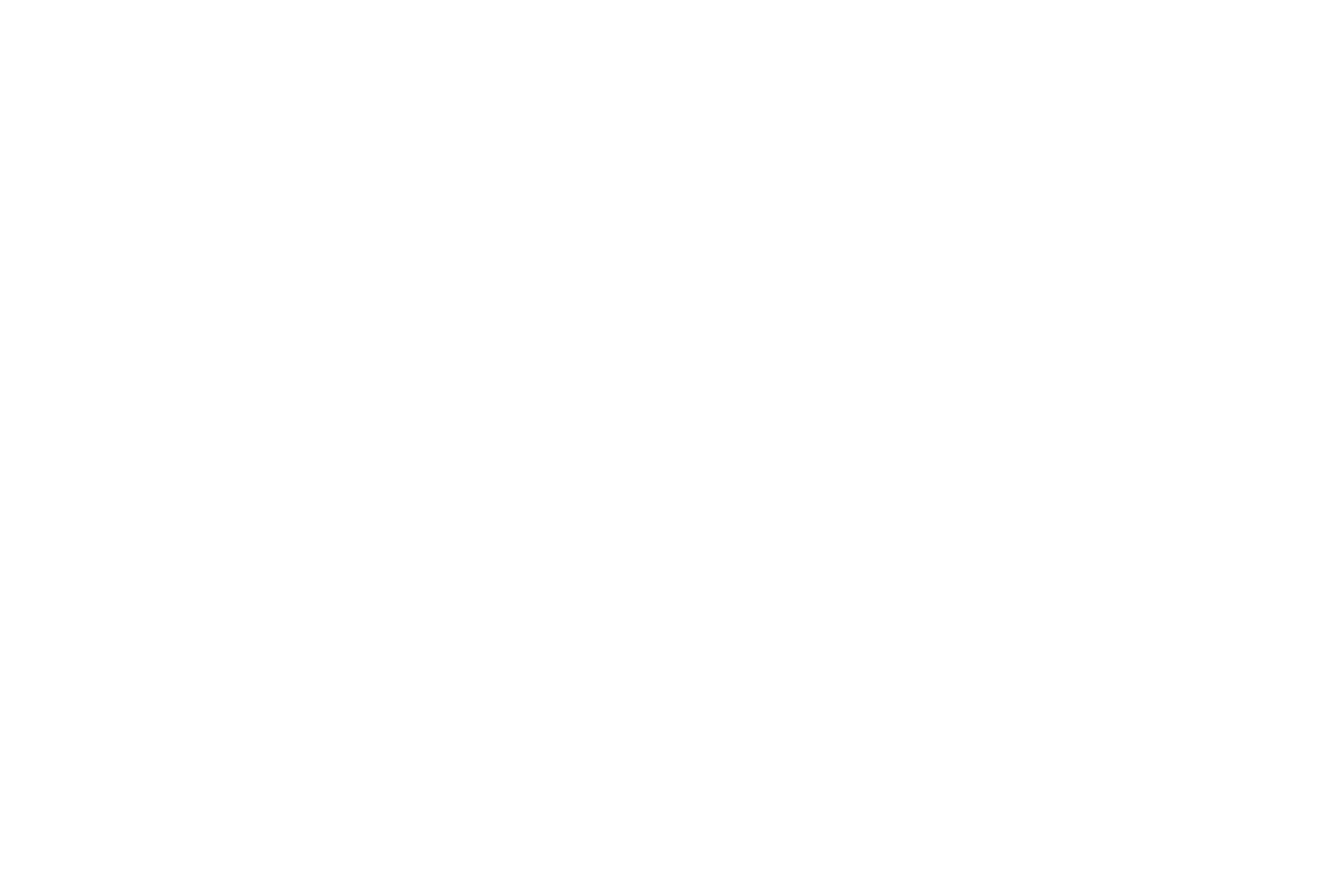 Photographic Touch Logo